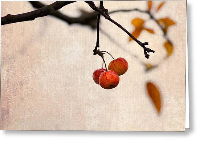 Fruit Tree Art Greeting Cards - Paradise Apple 8 Greeting Card by Alexander Senin