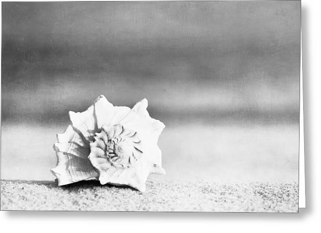Paradise Greeting Card by Carolyn Cochrane
