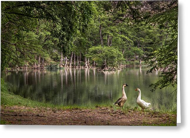 Wimberley Greeting Cards - Paradise Greeting Card by James Woody