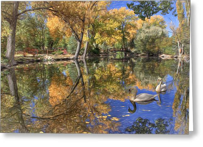 Swans... Greeting Cards - Paradise 2 Greeting Card by Donna Kennedy