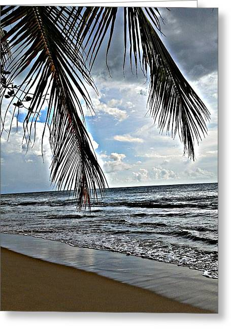 Rincon Beach Greeting Cards - Paradise  Rincon Puerto Rico Greeting Card by Loretta Cassiano