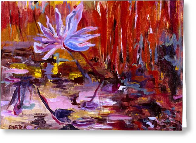 Recently Sold -  - Water Lilly Greeting Cards - Paradise Greeting Card by Sally Porter