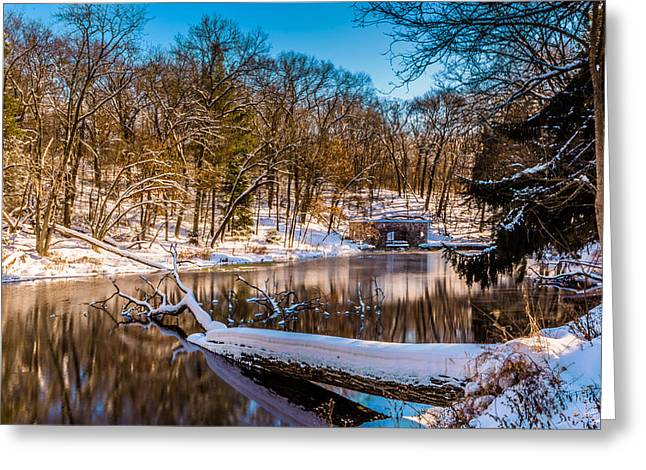 Kettle Moraine Greeting Cards - Paradise Springs in Winter Greeting Card by Randy Scherkenbach
