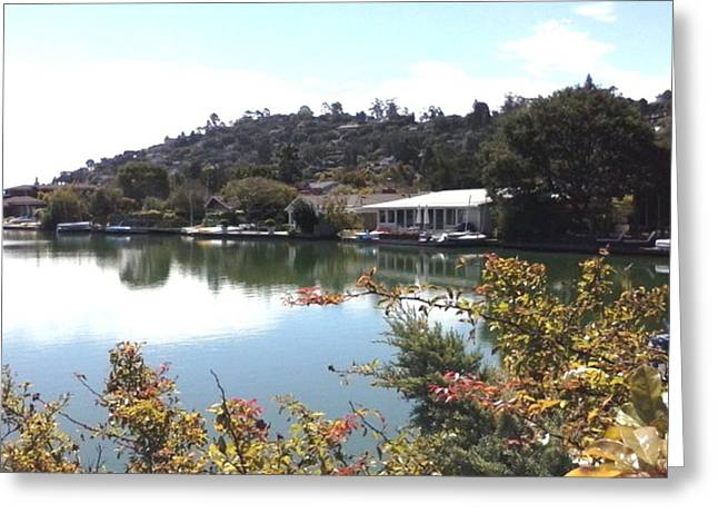 Tiburon Greeting Cards - Paradise Still Greeting Card by Keeley Chevrier