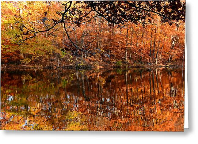 Autumn Art Greeting Cards - Paradiso Greeting Card by Lourry Legarde