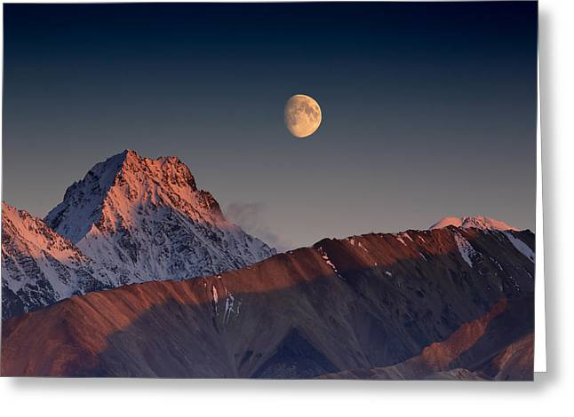 Denali National Park Greeting Cards - Paradox Greeting Card by Ed Boudreau