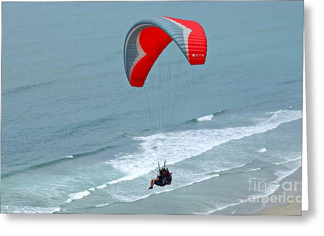 Park Scene Greeting Cards - Paragliding at Torrey Pines Greeting Card by Anna Lisa Yoder