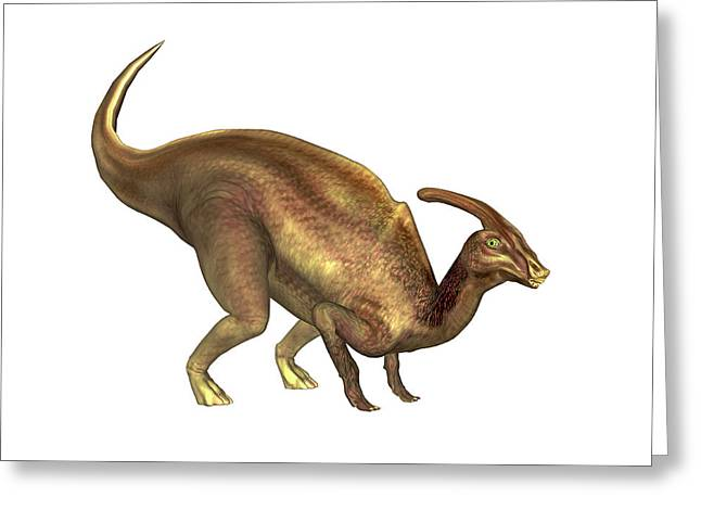 Parasaurolophus Dinosaur Greeting Card by Friedrich Saurer
