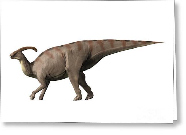 Parasaurolophus Dinosaur Greeting Card by Nobumichi Tamura