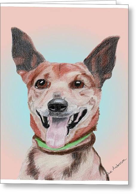 White Terrier Mixed Media Greeting Cards - Pardner a former shelter sweetie Greeting Card by Dave Anderson
