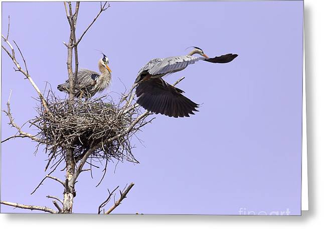 Art For Sanctuaries Greeting Cards - Parenthood Greeting Card by Mary Lou Chmura