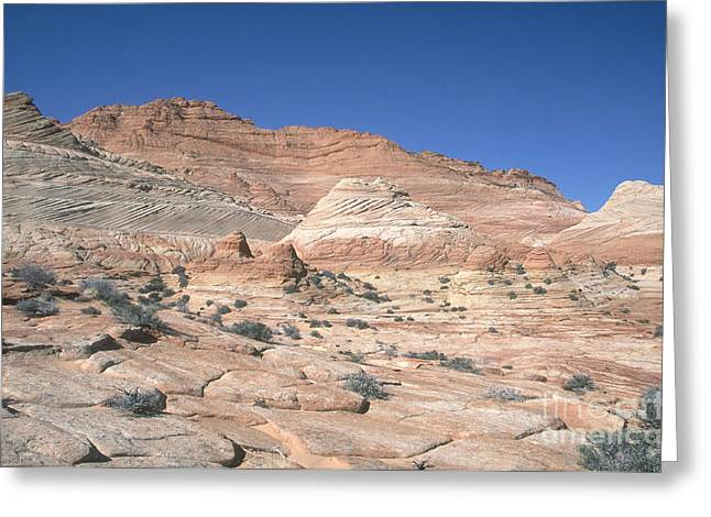 Lithified Greeting Cards - Paria Canyon-vermilion Cliffs Greeting Card by David Davis