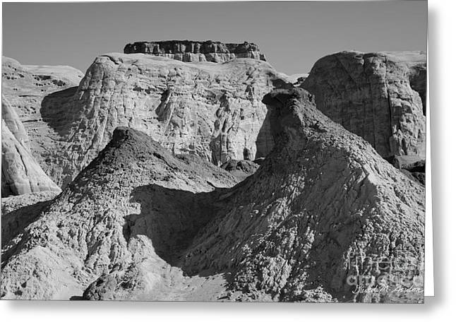 Toadstools Greeting Cards - Paria Utah III Greeting Card by David Gordon