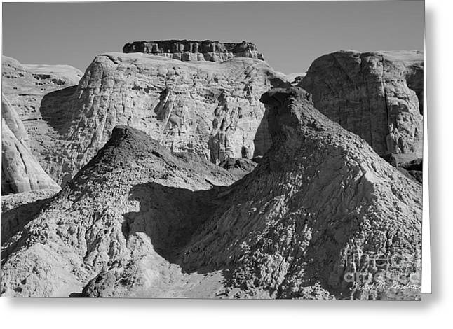Paria Utah IIi Greeting Card by Dave Gordon