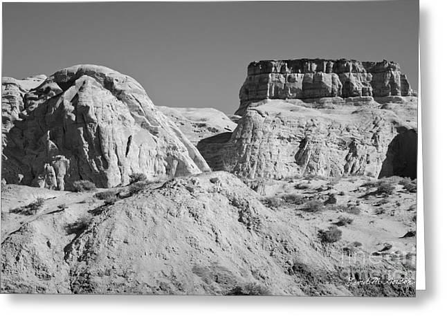 Paria Utah VI Greeting Card by David Gordon