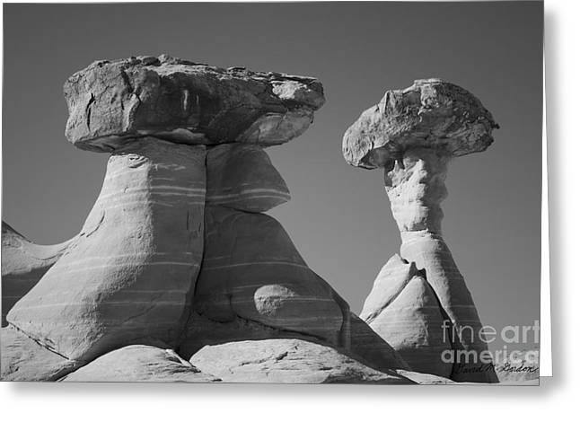 Toadstools Greeting Cards - Paria Utah XIII BW Greeting Card by David Gordon