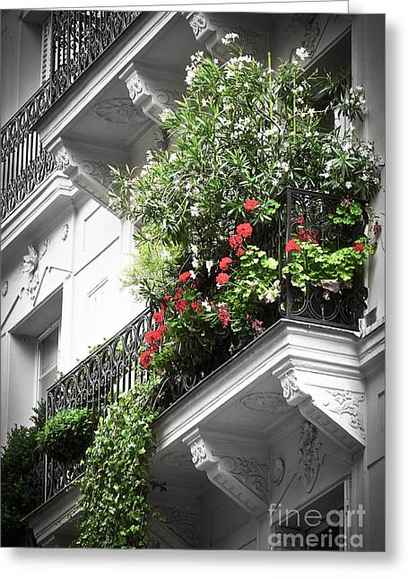 Buildings Greeting Cards - Paris balcony Greeting Card by Elena Elisseeva