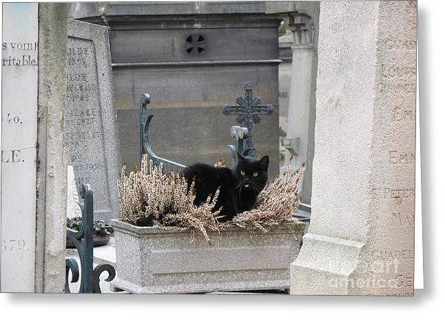 Cat Sitting On Cross Greeting Cards - Paris Cemetery Cat - Le Chats Noir - Pere LaChaise - Black Cat On Grave Cemetery Art Greeting Card by Kathy Fornal