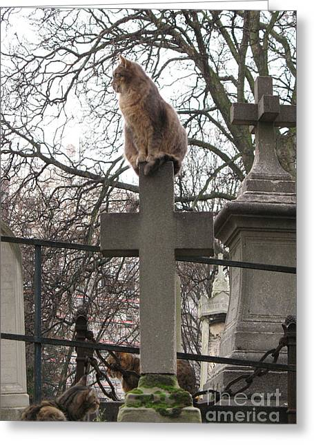 Cat Sitting On Cross Greeting Cards - Paris Cemetery Cats - Pere La Chaise Cemetery - Wild Cats On Cross Greeting Card by Kathy Fornal