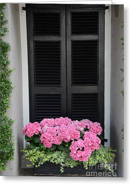 Floral Photographs Greeting Cards - Paris Pink Hydrangeas Window Box - Paris Hydrangeas Window Box Art Greeting Card by Kathy Fornal