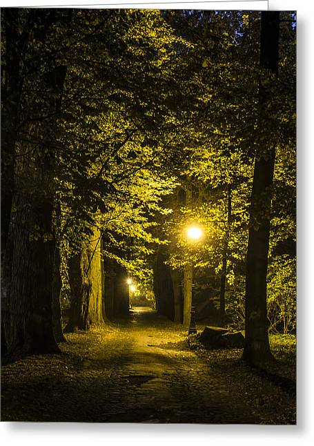 Night Lamp Greeting Cards - park Alley Greeting Card by Jaroslaw Grudzinski