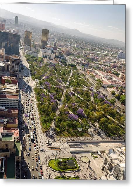 Mexico City Photographs Greeting Cards - Park and Mexico City Greeting Card by Jess Kraft