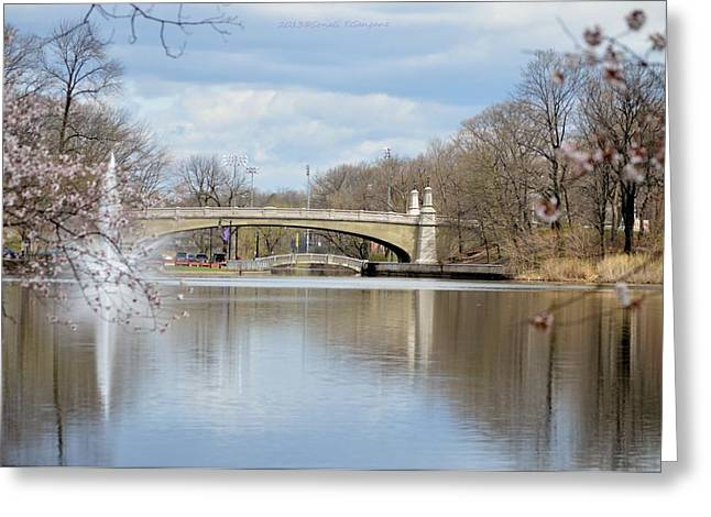 Bridge Over A Lake Greeting Cards - Park Avenue bridge Greeting Card by Sonali Gangane