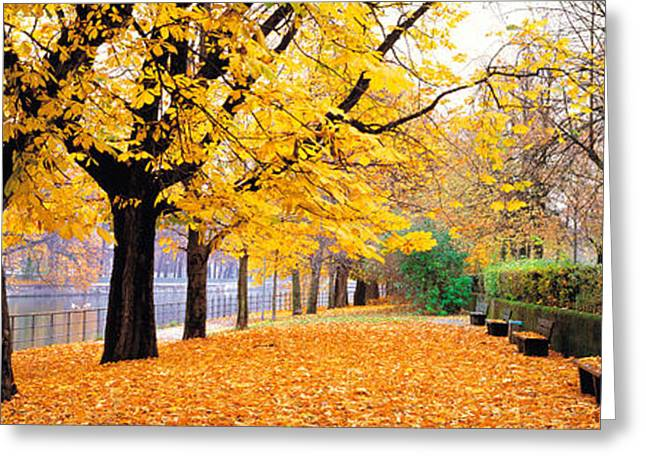 Munich Greeting Cards - Park Bavaria Munich Germany Greeting Card by Panoramic Images