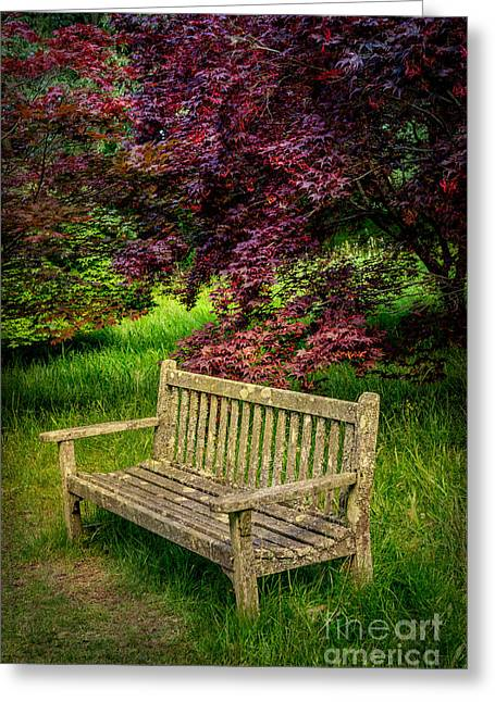 Park Bench Greeting Card by Adrian Evans