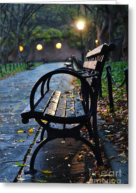 Park Benches Greeting Cards - Park Bench at Midnight Greeting Card by Anahi DeCanio