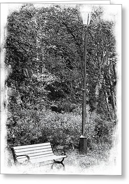 Stroll In The Park Greeting Cards - Park Bench Black and White Greeting Card by Barbara Griffin