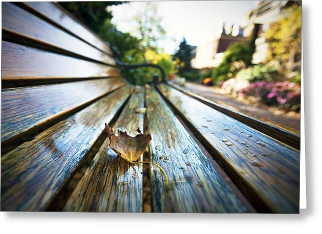Park Benches Greeting Cards - Park Bench Greeting Card by Eric Gendron