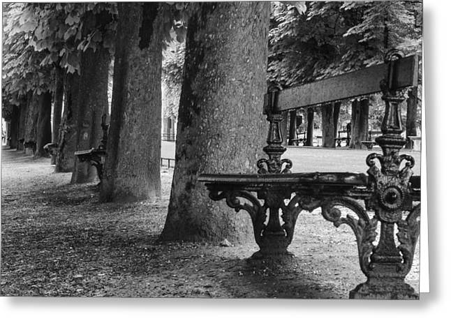 Park Benches Greeting Cards - Park Bench in Paris Greeting Card by Nomad Art And  Design