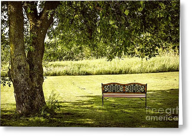 Park Benches Photographs Greeting Cards - Park bench under tree Greeting Card by Elena Elisseeva