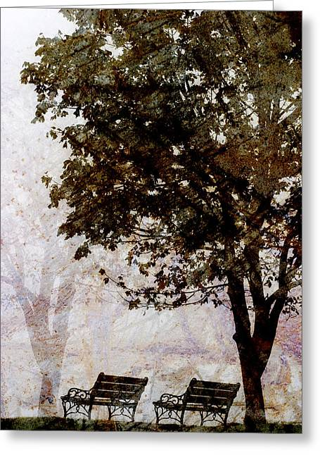 Emptiness Greeting Cards - Park Benches Greeting Card by Carol Leigh