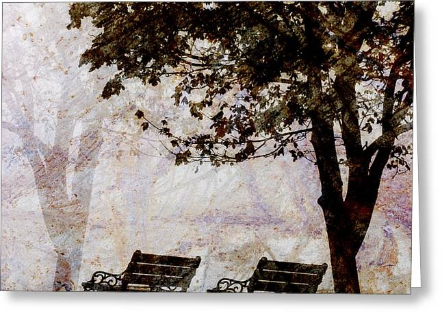 Emptiness Greeting Cards - Park Benches Square Greeting Card by Carol Leigh
