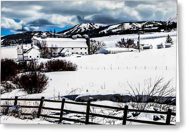 Snow Scene Landscape Greeting Cards - Park City Winter Landscape Greeting Card by La Rae  Roberts