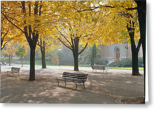 Dappled Sunlight Greeting Cards - Park Geneve, Switzerland Greeting Card by Panoramic Images