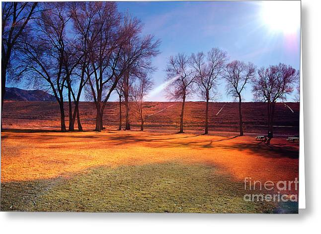 Gunter Nezhoda Greeting Cards - Park in McGill near Ely NV in the evening hours Greeting Card by Gunter Nezhoda