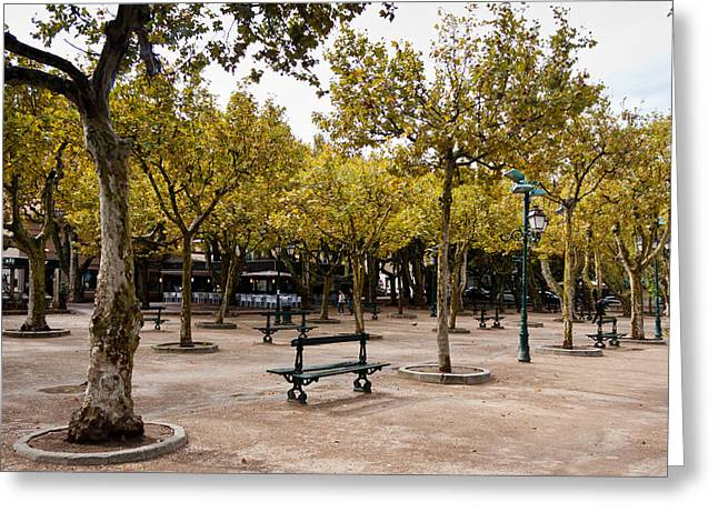 St.tropez Greeting Cards - Park in Saint Tropez Greeting Card by Gyorgy Kotorman