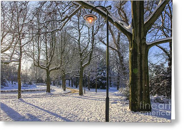 Snow-covered Landscape Greeting Cards - Park in the snow Greeting Card by Patricia Hofmeester