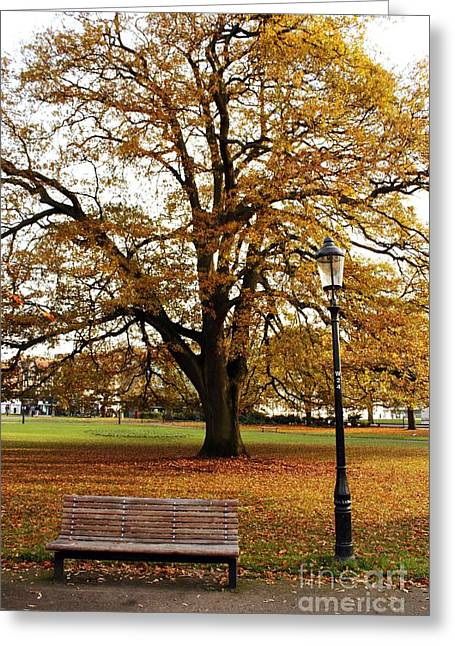 Park Life Greeting Card by Terri Waters