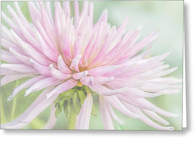 Park Princess Collarette Dahlia Greeting Card by Julie Palencia