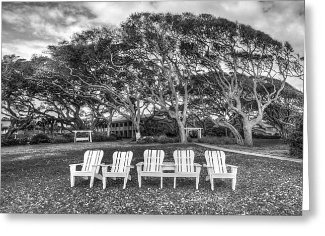Coastal Forest Greeting Cards - Park under the Oaks Greeting Card by Debra and Dave Vanderlaan