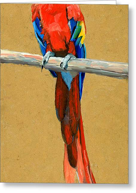 Parrot Perch Greeting Card by Alice Leggett