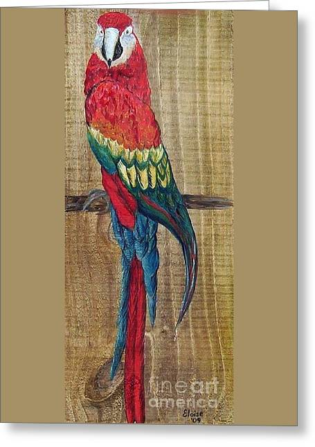 Parrot - Scarlet Macaw Greeting Card by Eloise Schneider