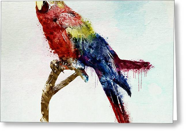Parrot Mixed Media Greeting Cards - Parrot watercolor Greeting Card by Marian Voicu