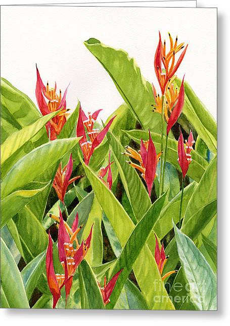 Parrot's Flower Heliconia Greeting Card by Sharon Freeman