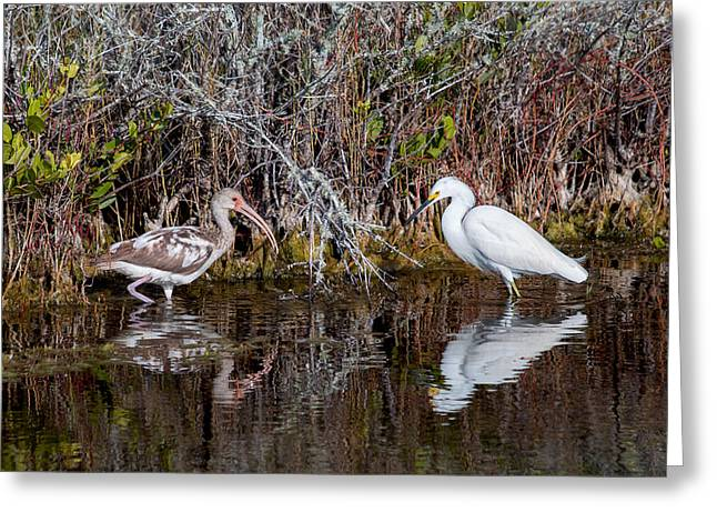 Snowie Greeting Cards - Partners Greeting Card by John Bailey