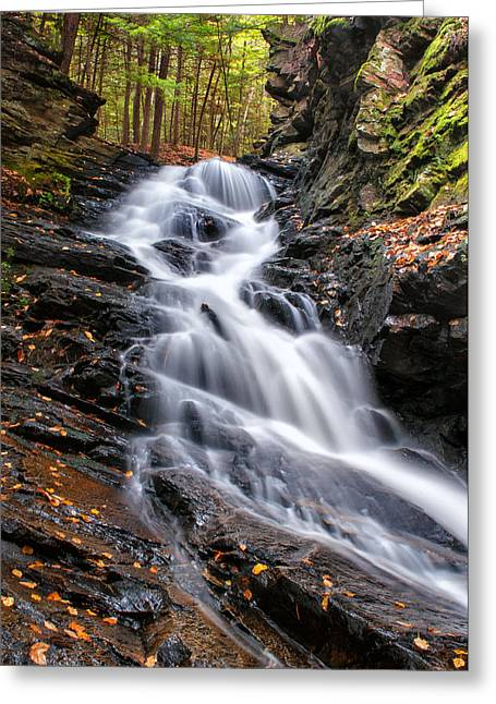 Moss Greeting Cards - Wilde River Cascades - Chesterfield Gorge  Greeting Card by Thomas Schoeller